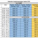 Unggr_kalender_H19